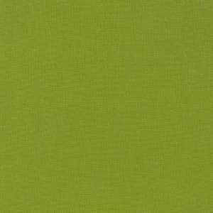 RK1843 Gecko Kona Cotton Solids